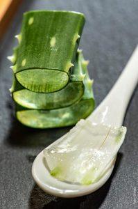 foto de aloe vera en cuchara