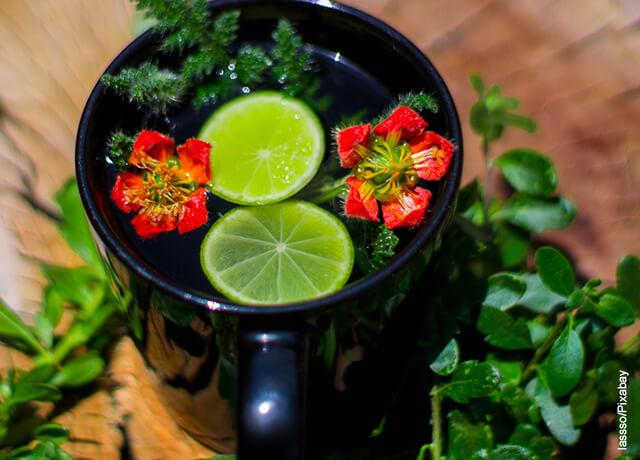 Foto de taza de té con limón y hierbas