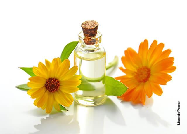 Foto de un tarro de manzanilla con flores sobre una mesa