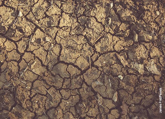 Foto de un terreno desértico