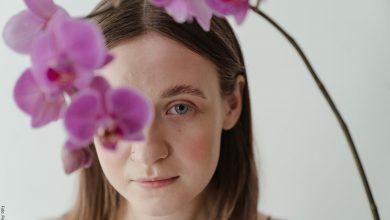 ¿Cómo cuidar una orquídea y mantenerla siempre bella?