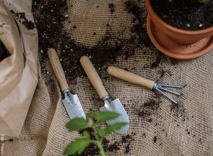 Foto de unos utensilios de jardinería para ilustrar cómo cuidar una orquídea