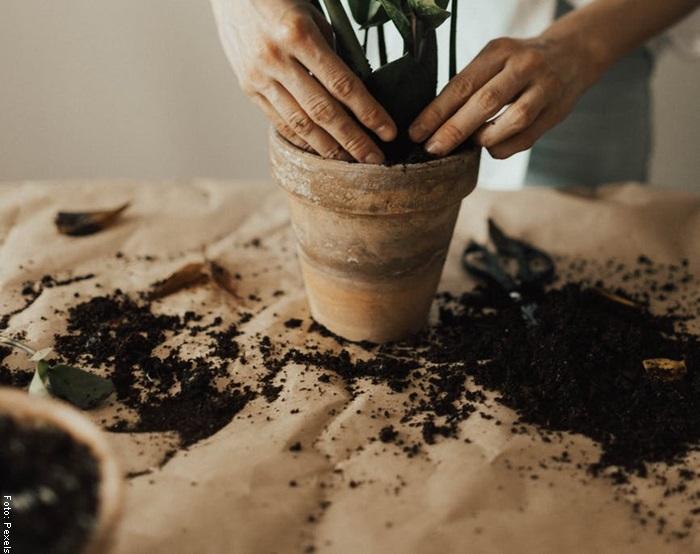 Foto de una mujer con una maceta con tierra