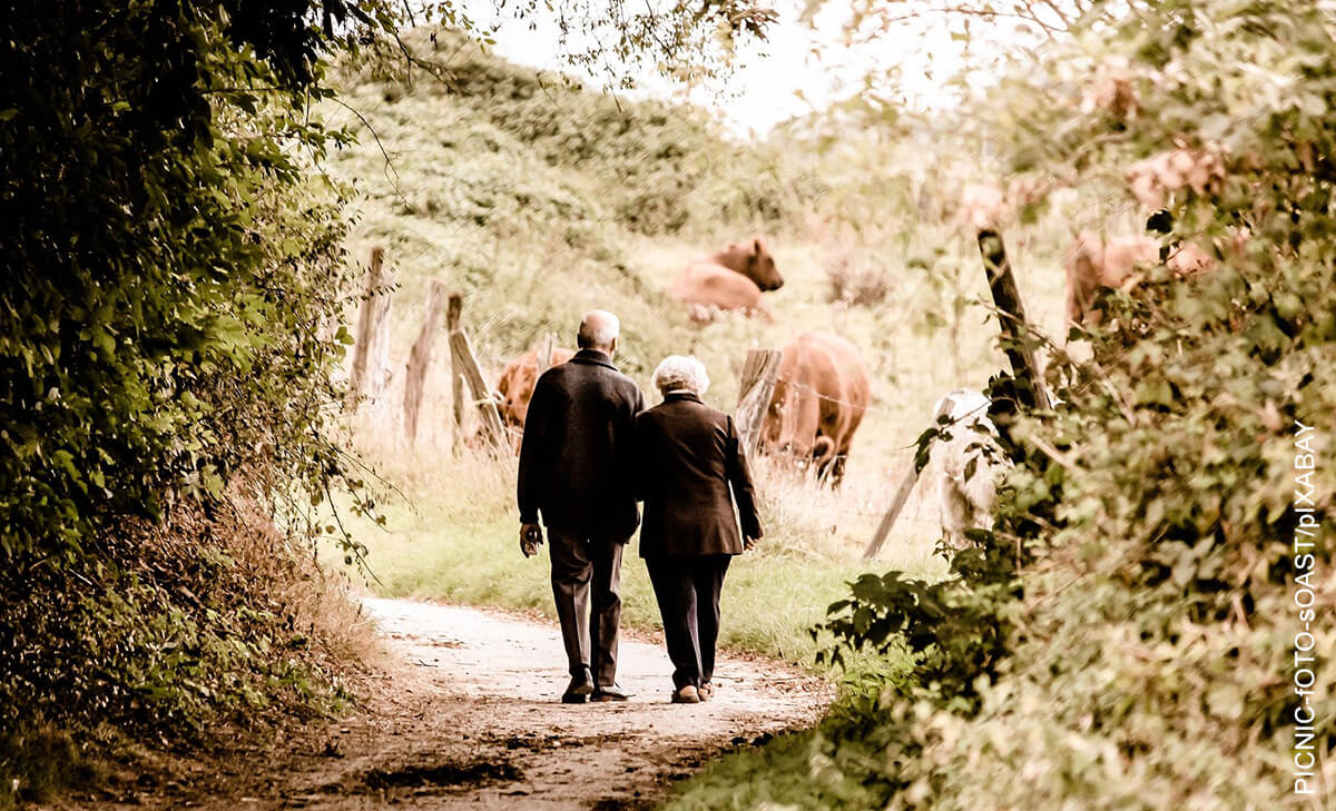 Cuidados del adulto mayor ¡una muestra de amor!