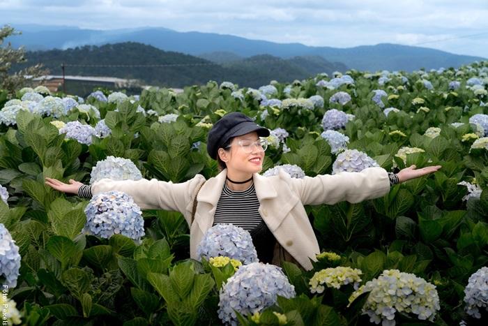 Foto de una mujer en medio de hortensia cuidados