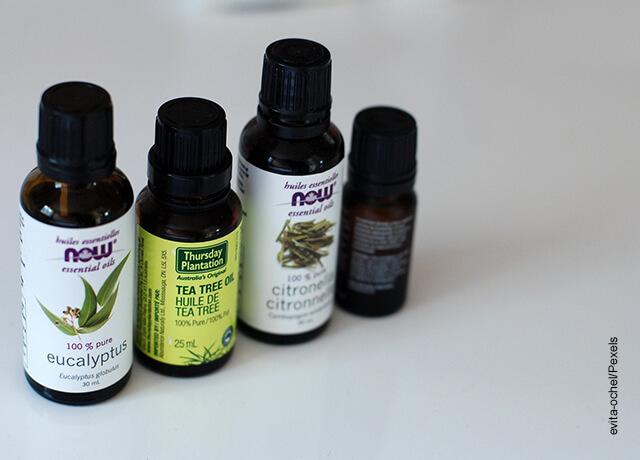 Foto de tarros de aceite de eucalipto