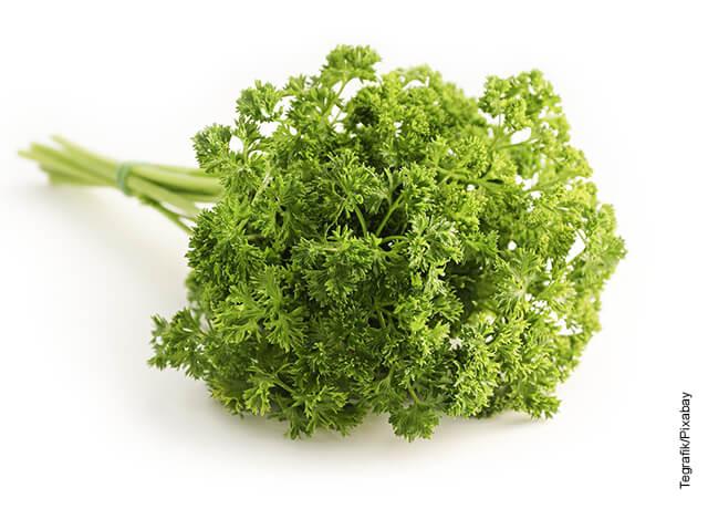 Foto de una rama de verduras
