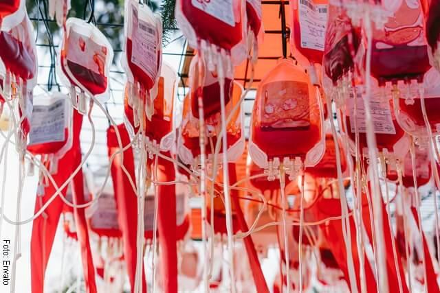 foto de sangre en bolsas