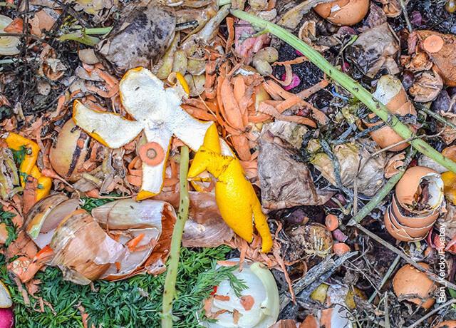 Foto de desechos de comida que muestra cómo hacer compost