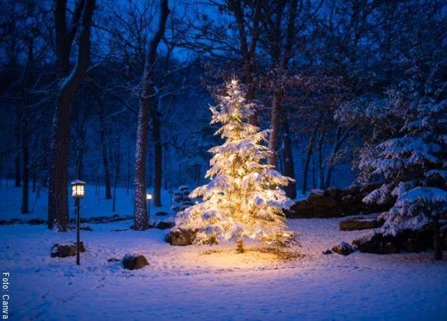 Foto de la decoración de un árbol de Navidad 2020