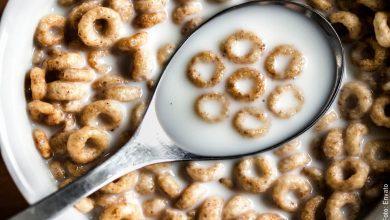 ¿El cereal engorda? Descúbrelo aquí