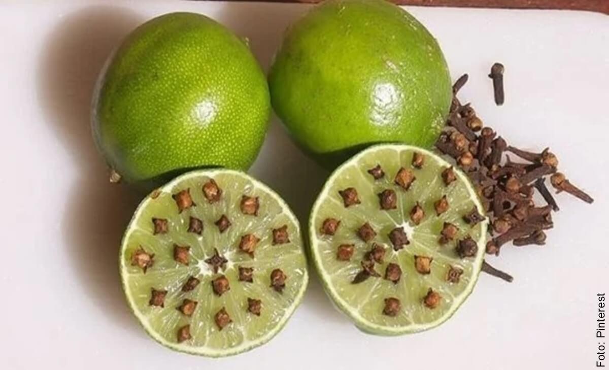 Limón con clavos: Repelente de insectos casero y natural