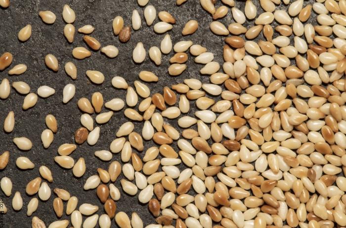 Foto de unas semillas de ajonjolí