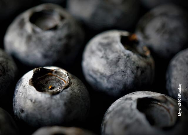 Foto de frutos que ilustran para qué sirve el arándano
