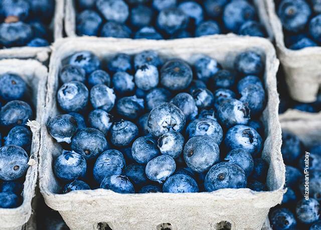 Fruto de arándanos azules en una caja
