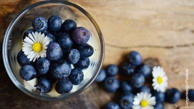 Foto de una taza de frutos que ilustra para qué sirve el arándano