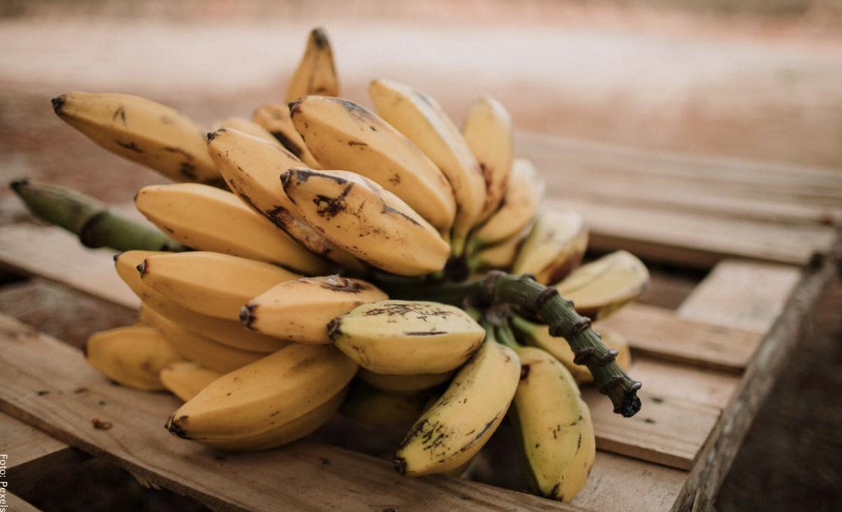 Para qué sirve el banano, ¡lo que no sabías!