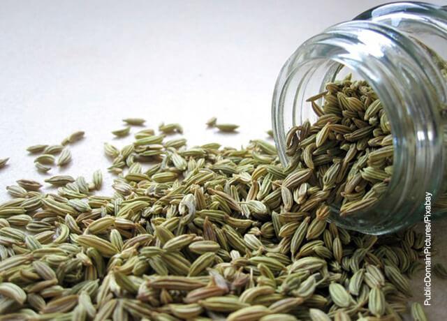 Foto de unas semillas que indican para qué sirve el hinojo