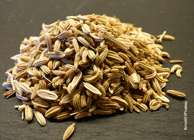 Foto de semillas de hinojo