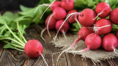 Para qué sirve el rábano, sus beneficios para la salud