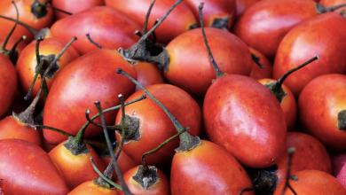 Para qué sirve el tomate de árbol, beneficios para tu salud