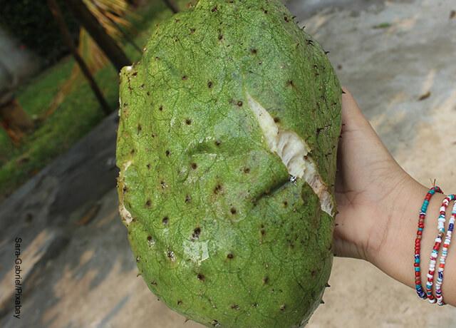 Foto de una guanábana partida por la mitad