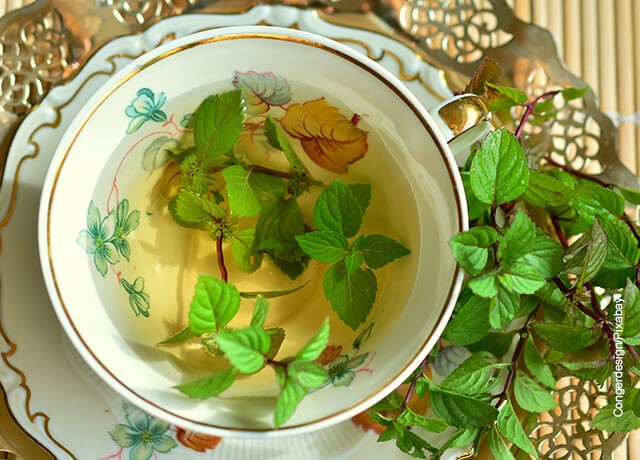 Foto de una taza de té de hierbas