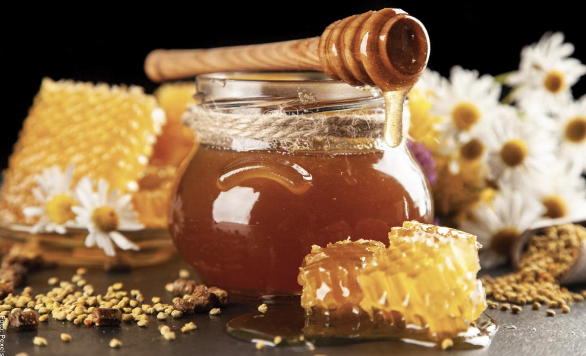 ¿Para qué sirve la miel de abeja? Beneficios que desconocías