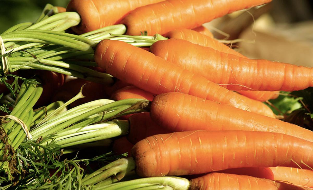 ¿Para qué sirve la zanahoria? Beneficios que no conocías