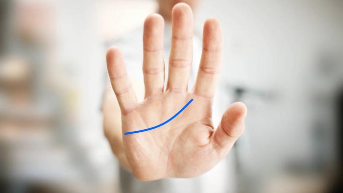 Foto de la palma de la mano con la línea del corazón