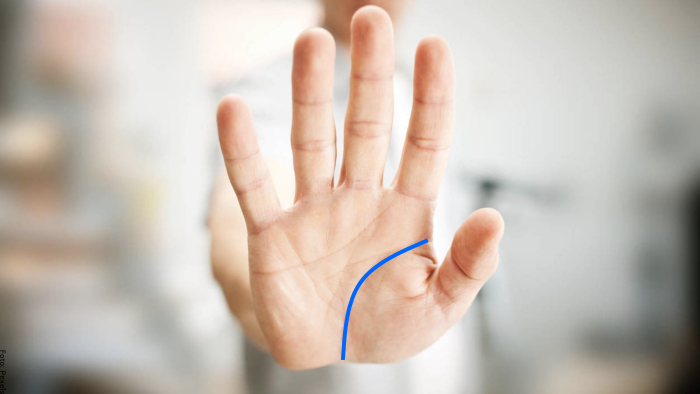 Foto de una mano con la línea de la vida
