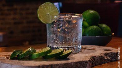 Foto de un coctel con limón que ilustra el gin tonic y su receta