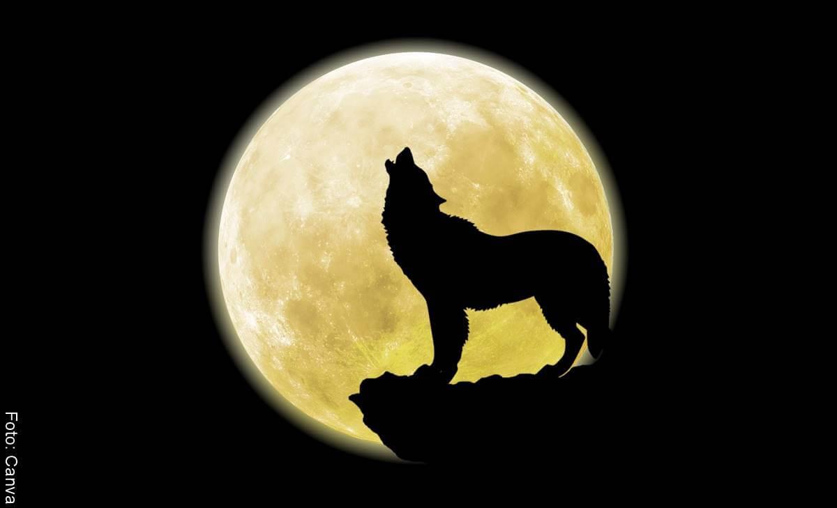 Luna Lobo: El fenómeno de plenilunio del 28 de enero te afecta así