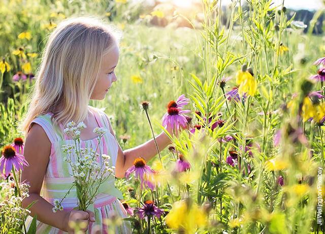 Foto de una niña recogiendo flores en el campo