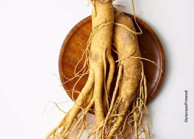 Foto de tallos de una planta que ilustran para qué sirve el ginseng