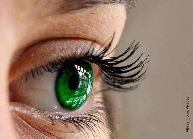 Foto de los ojos y las pestañas de una mujer en primer plano