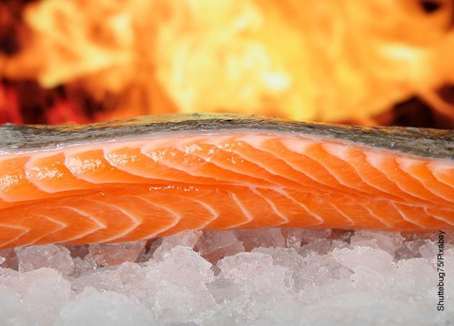 Foto de un trozo de salmón sobre hielo