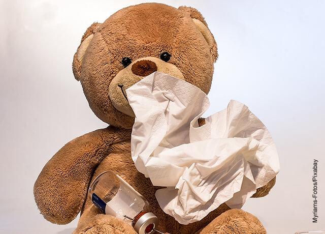 Foto de un oso de peluche con un pañuelo facial