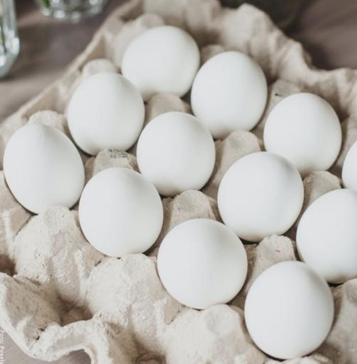 Foto de varios huevos blancos
