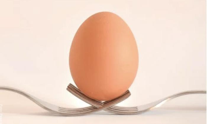 Foto de un solo huevo