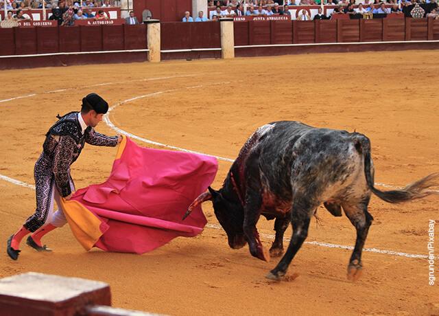 Foto de una corrida de toros