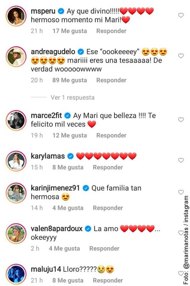 foto que muestra los comentarios en el video de los gemelos de alejandro riaño