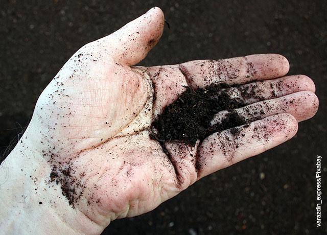 Foto de una mano sosteniendo tierra