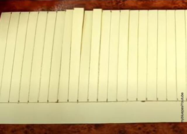Foto de recortes hechos sobre una cartulina