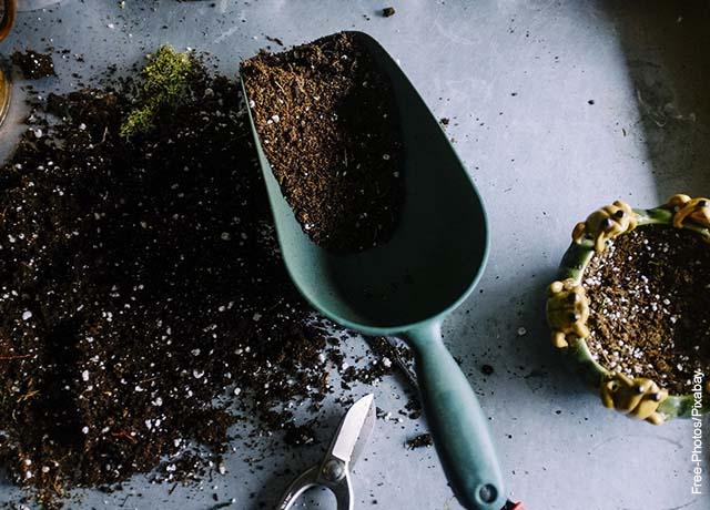 Foto de una pala junto con una maceta llena de tierra