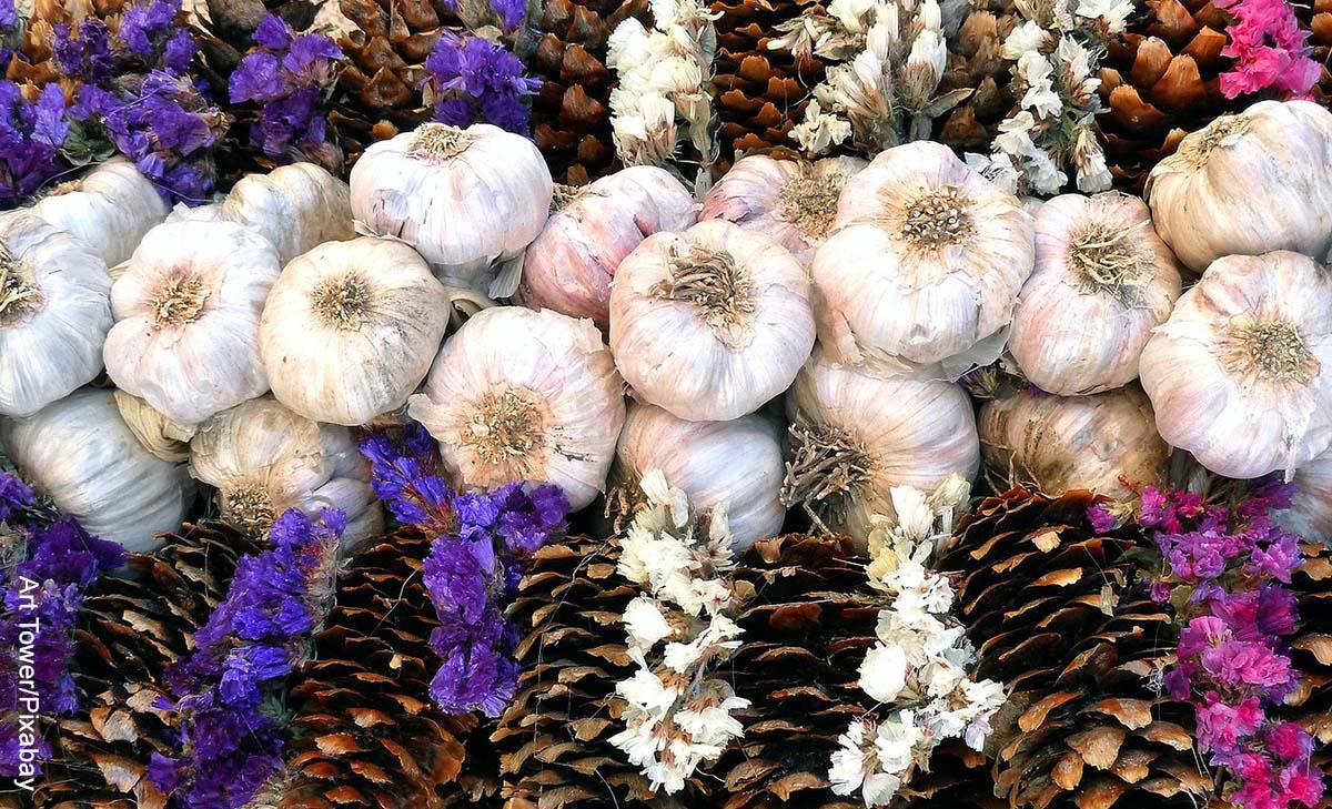 Foto de varios ajos en una canasta de madera con flores