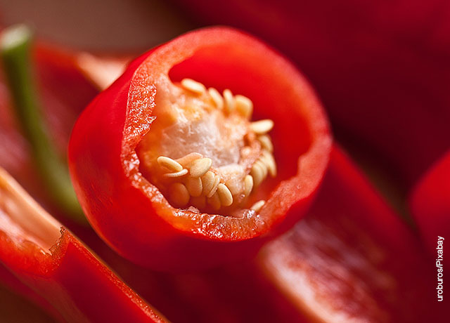 Foto del interior de un vegetal con sus semillas que muestra cómo sembrar pimentón