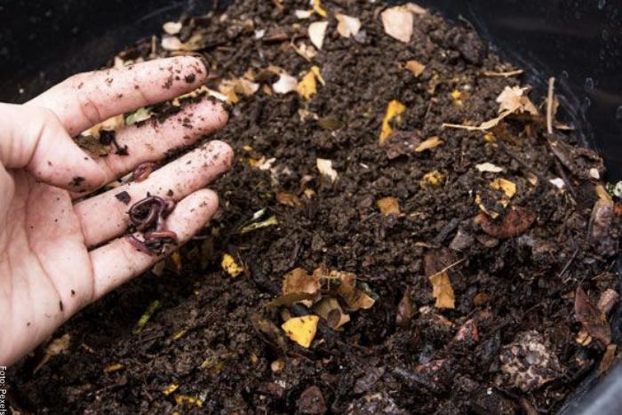 Foto de una persona fertilizando tierra