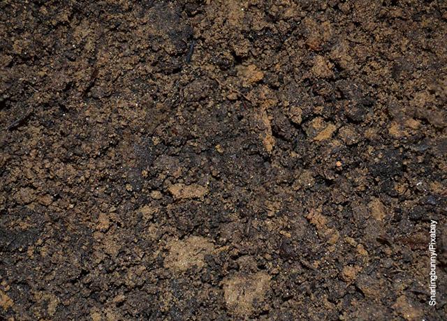 Foto de tierra mojada