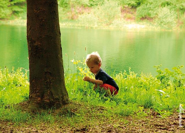 Foto de un niño jugando junto a un árbol